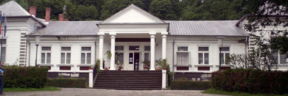 Casa_memoriala_George_Enescu1